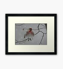 I'm so cold... Framed Print