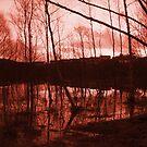 Burn by Per Ove Sleen