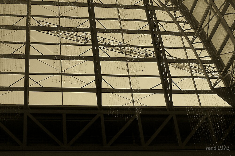crane by randi1972