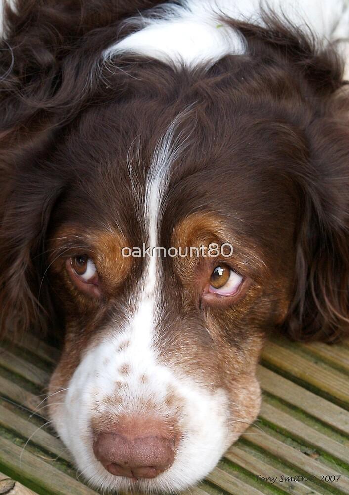 Those Eyes by oakmount80