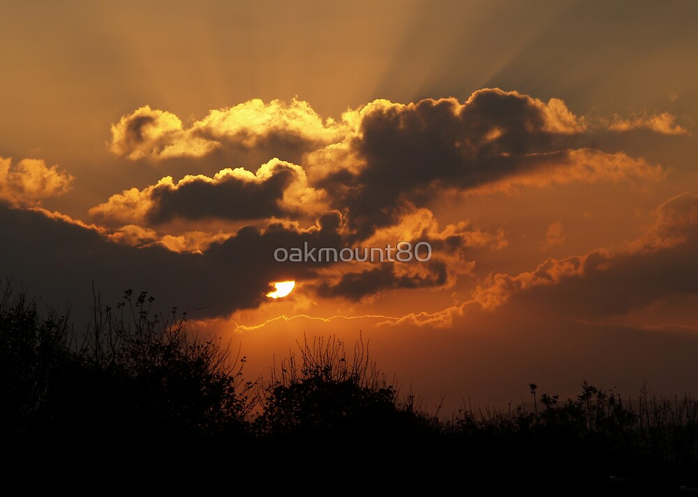 At The End of The Day by oakmount80