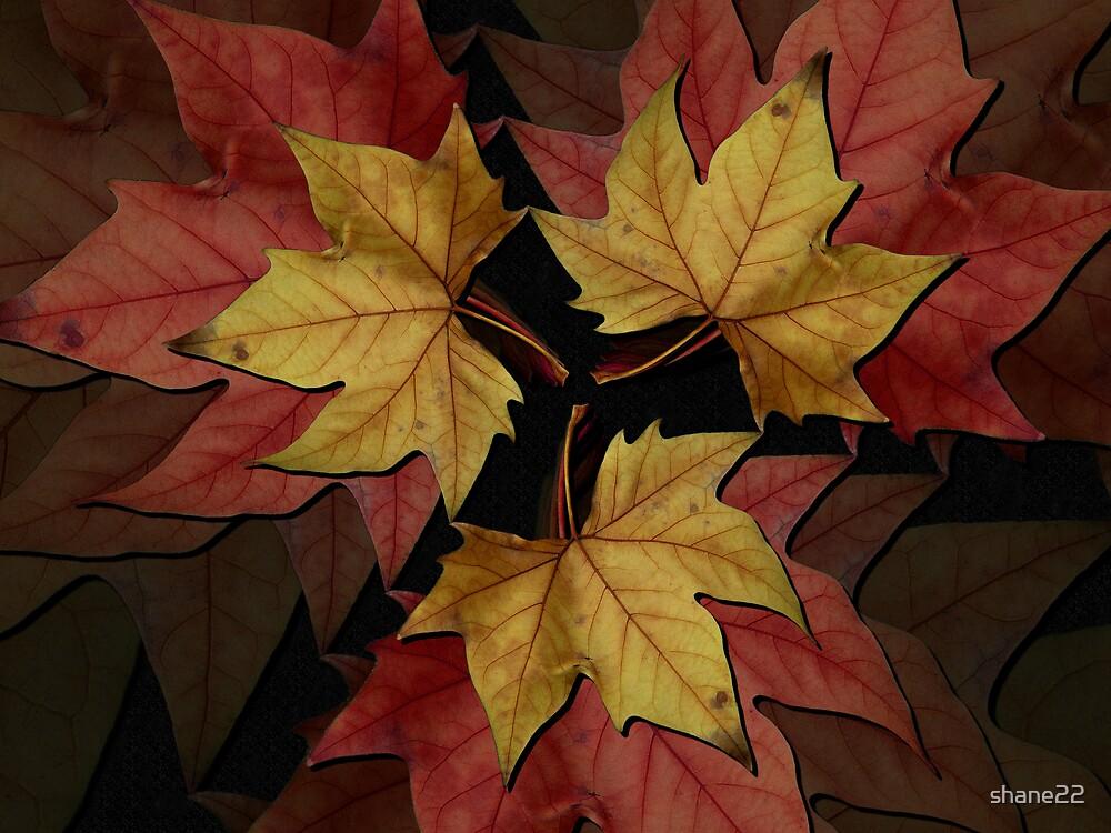 Autumn Leaves II by shane22