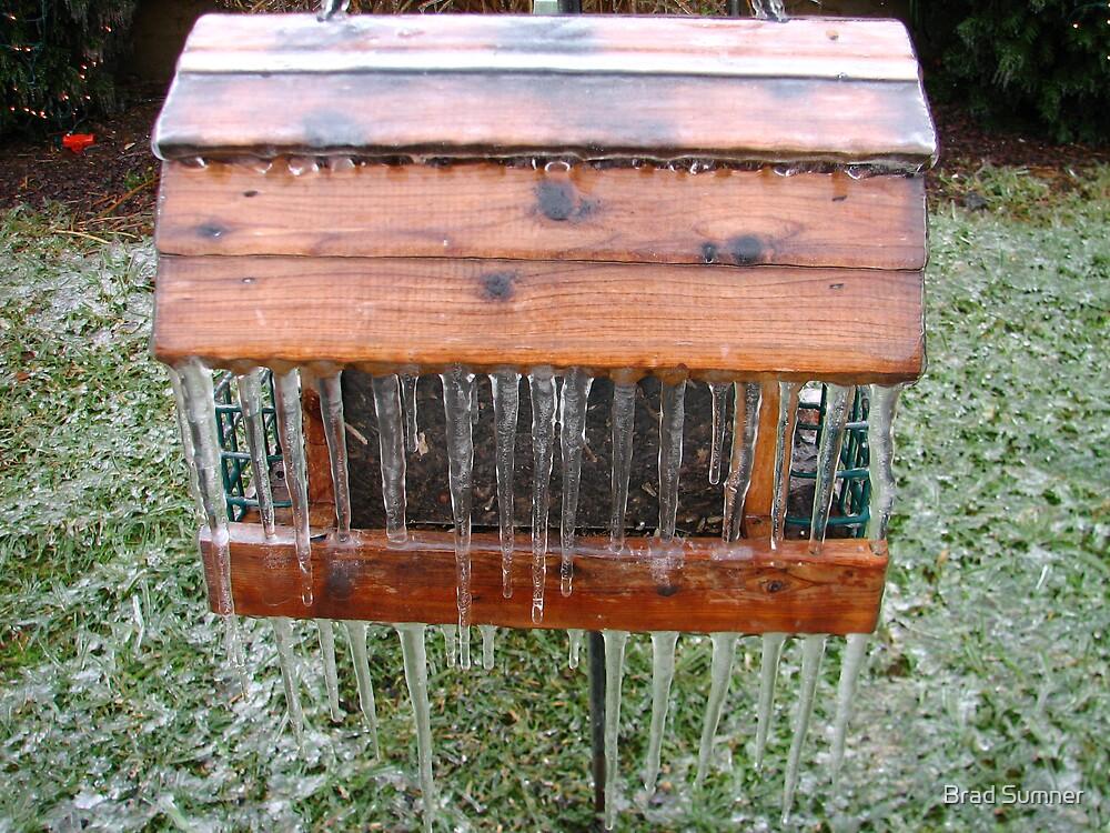 Anybody got an Ice Breaker? by Brad Sumner