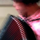 The Piano(accordion) Man. by malcblue