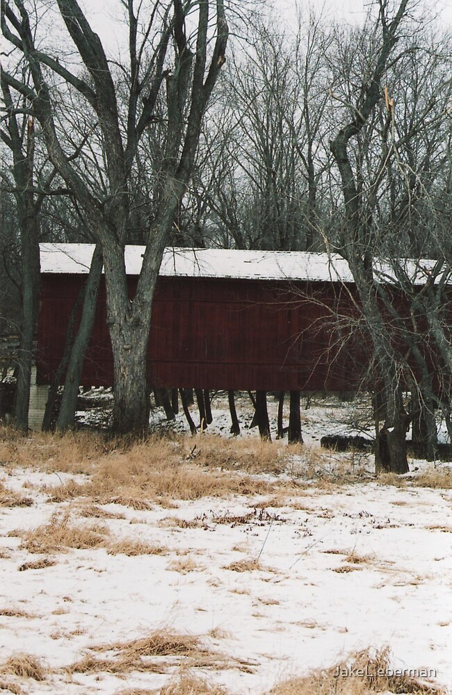 Covered Bridge by JakeLieberman