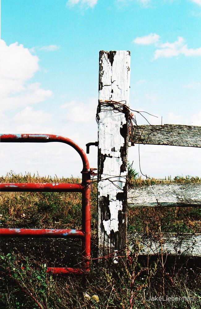Red Gate by JakeLieberman