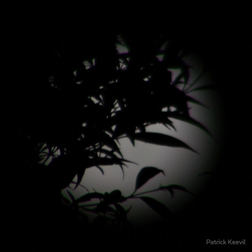 moon by Patrick Keevil