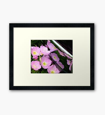 Nature reflected in chrome Framed Print