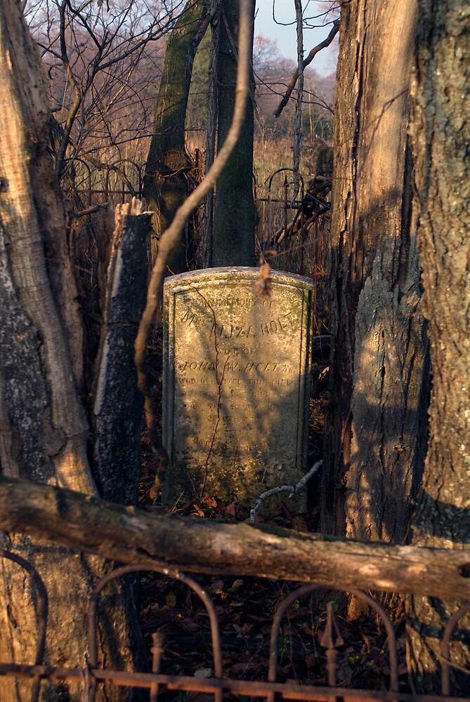 Overgrown by Rod  Adams