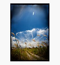 field of Vision Photographic Print