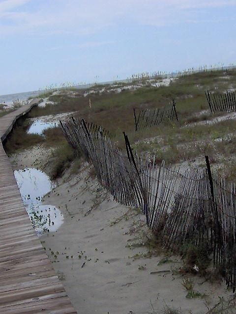 Boardwalk by dabeanes