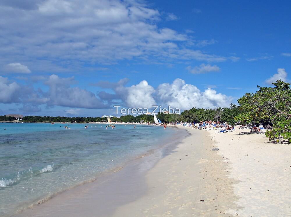 The perfect beach by Teresa Zieba