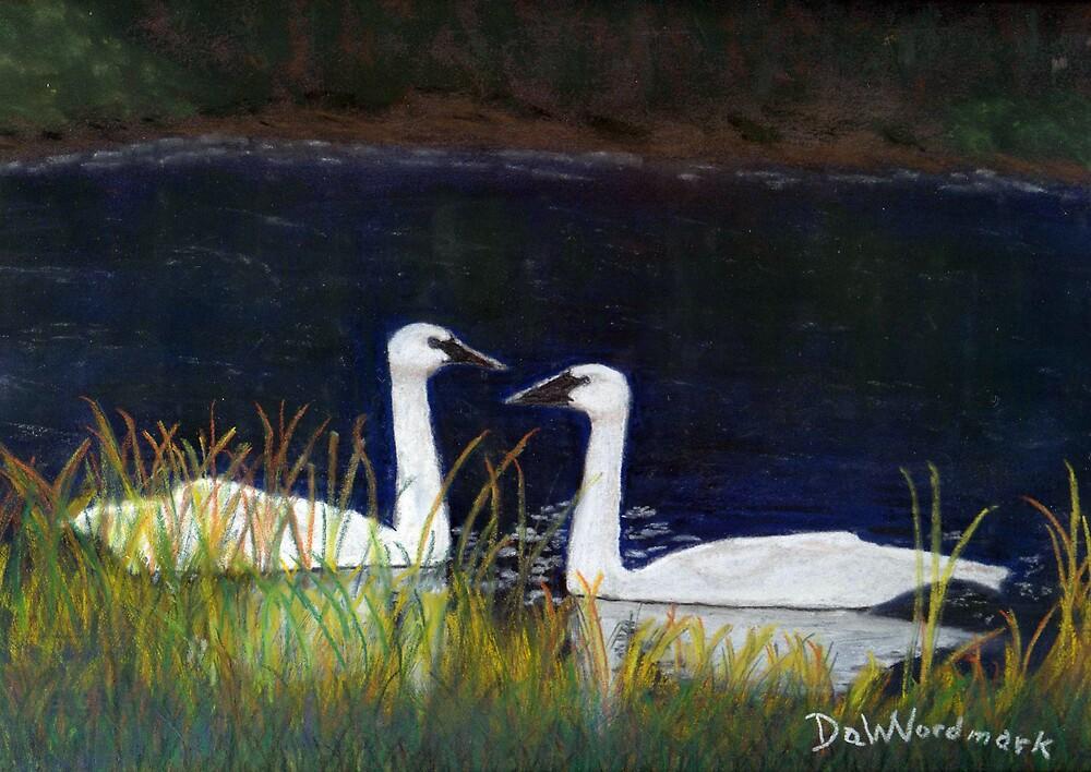 Swan Love by DaWNordmark