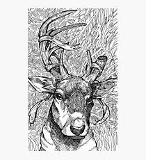 The Deer Prince Photographic Print