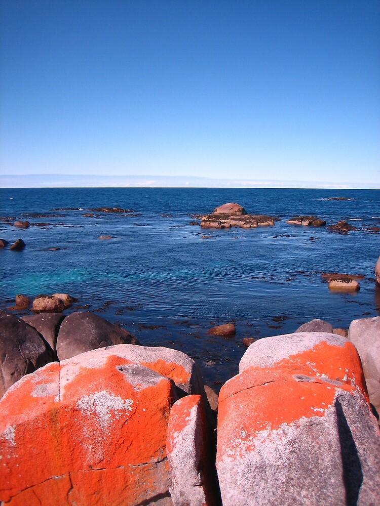Red Rocks at Burns Bay, Tasmania 3 by LoopGoose
