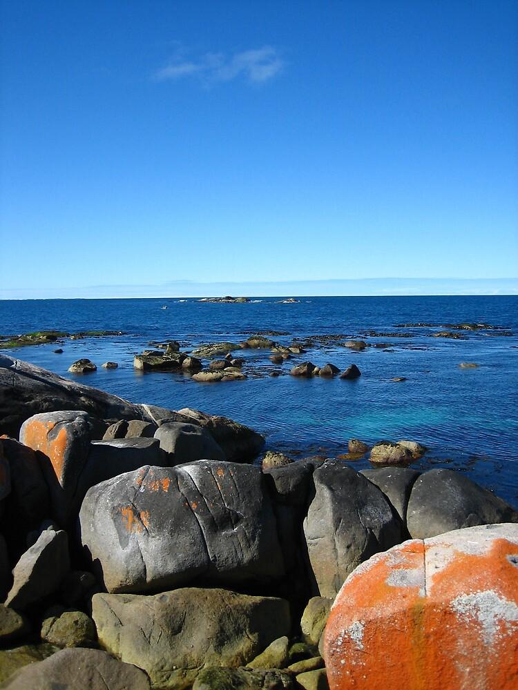 Rocks at Burns Bay, Tasmania by LoopGoose