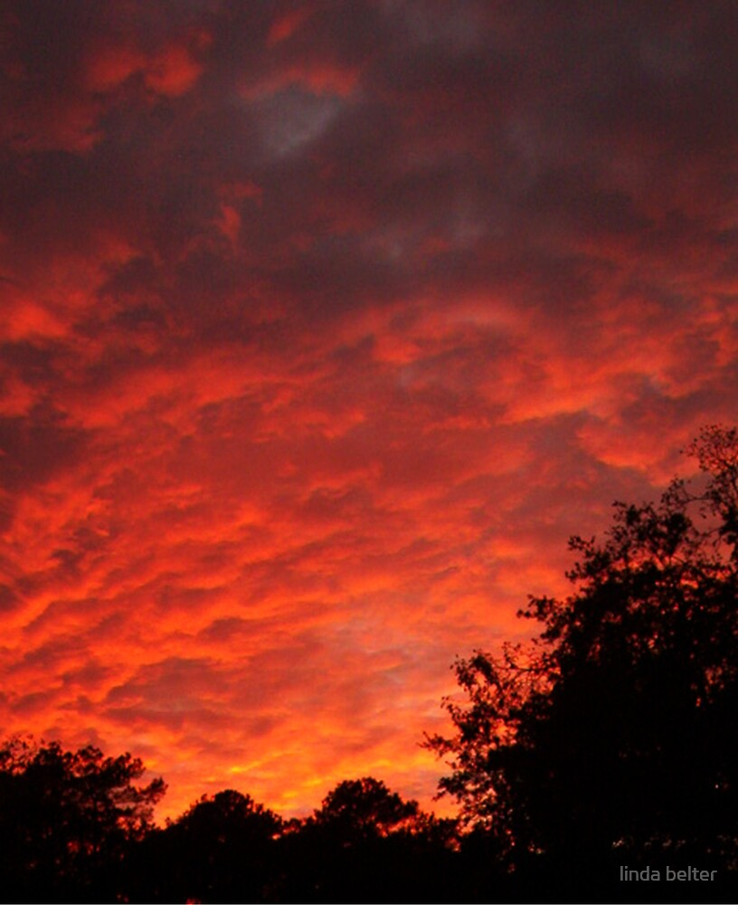 """Orange Sunset"" by linda belter"