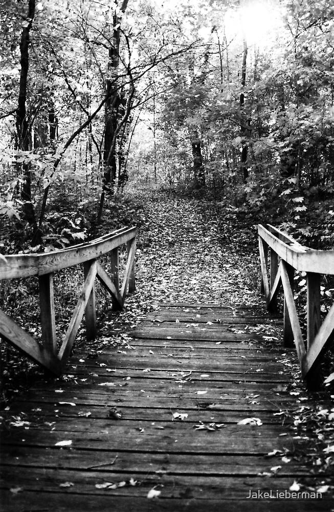 Wooden Bridge by JakeLieberman