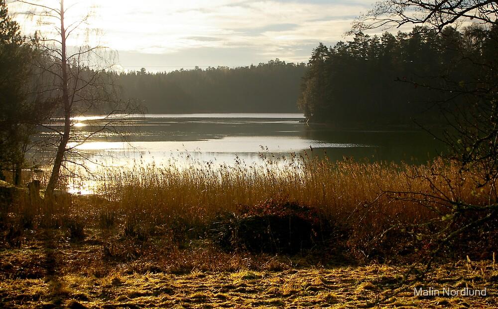 Autumn Glory by Malin Nordlund