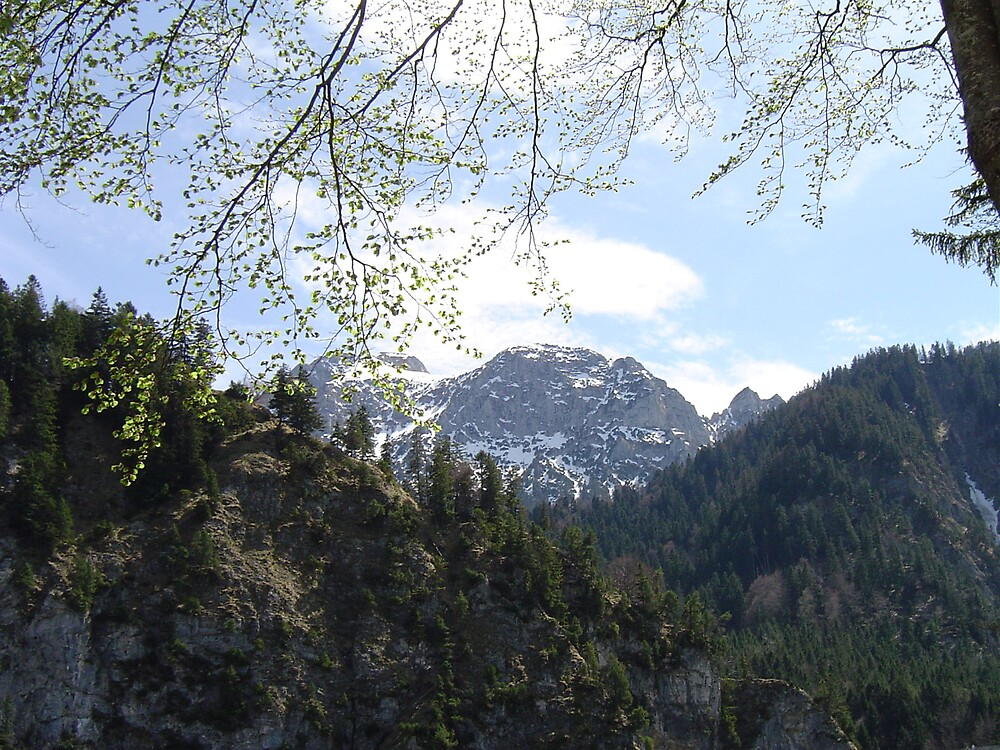 Distant Alps by Geoffrey Wicking