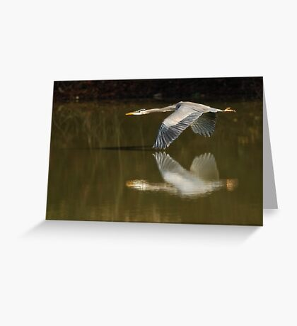 Wing to Wing Greeting Card