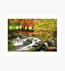 flow river, flow Art Print