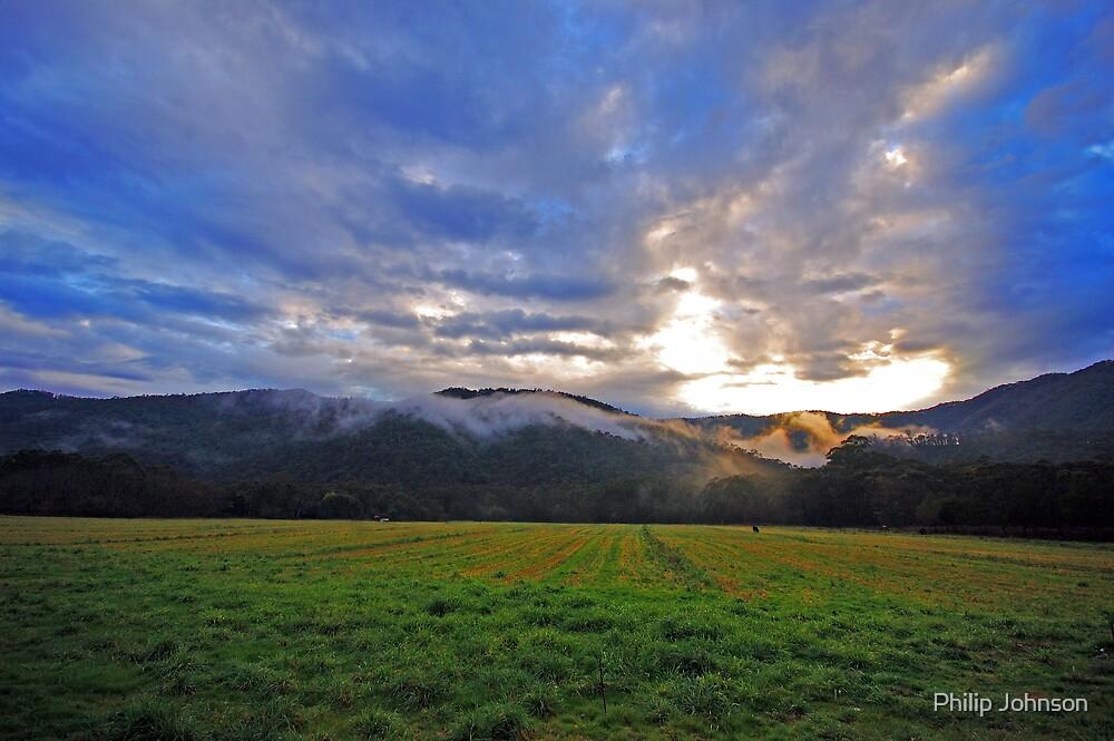 Morning Glory - Harrietville Victoria,Australia by Philip Johnson