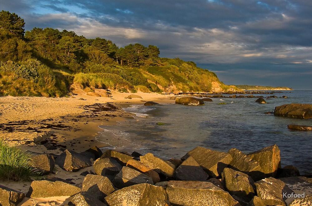 Paradise Beach by Kofoed