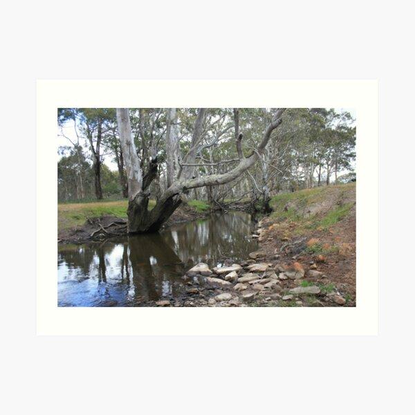 River Reflections II Art Print