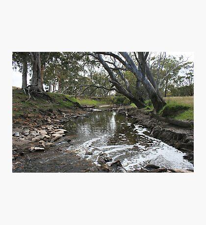 Running River Photographic Print