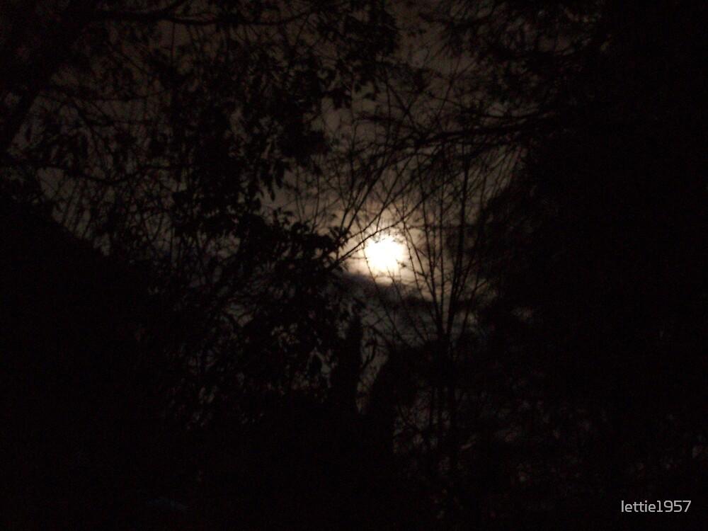 Moon Glow by lettie1957