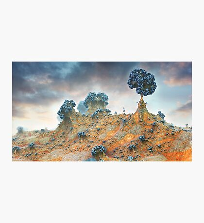 Went up the Hill to visit my Tree Photographic Print