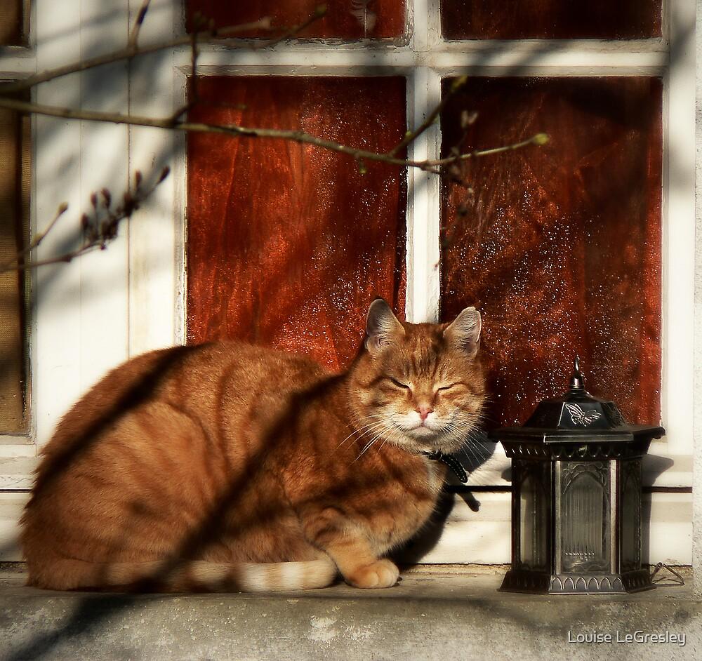 Dikkie the cat by Louise LeGresley