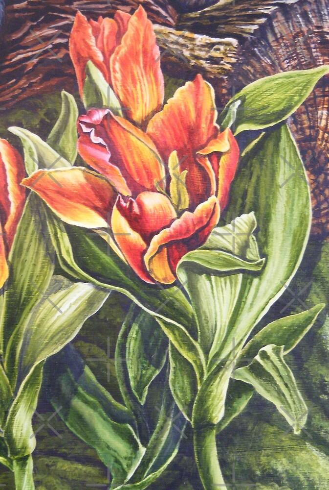tulips by dnlddean