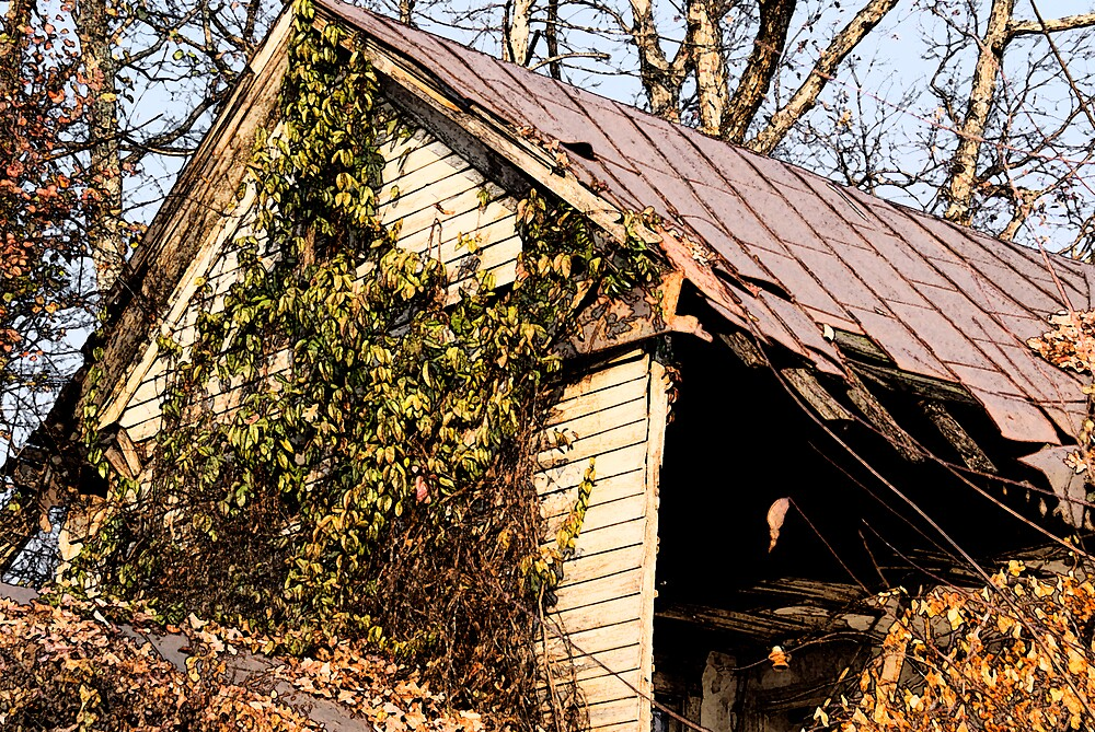 Rusted Roof by Rod  Adams