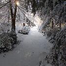 Snow on Signal Mountain  by methec