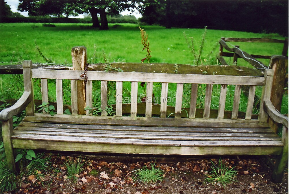 Estate Bench and Padlock  by Carl Gaynor