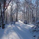 Snow on Signal Mountain 3 by methec