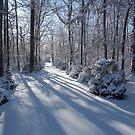 Snow on Signal mountain 4 by methec