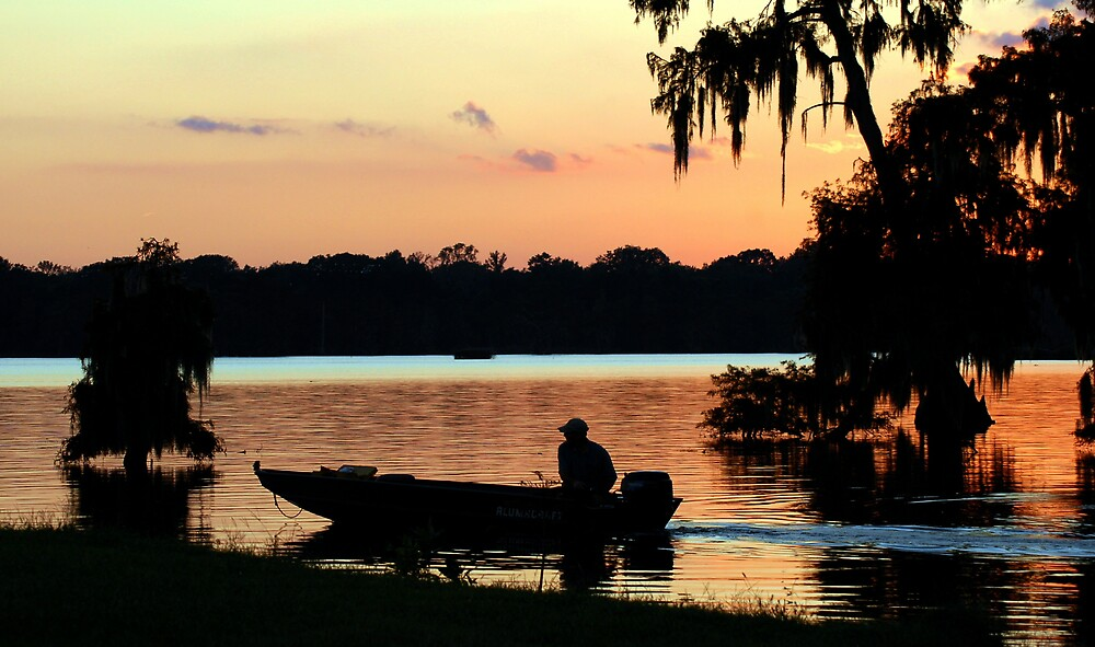 Life On The Bayou by AcadianaGal