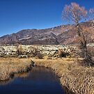 Owens River near Lone Pine by David Chesluk