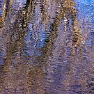reflections- Owens River near Lone Pine by David Chesluk