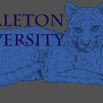 Valeton University Pride by flapperwitch