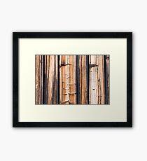 Shelves Framed Print