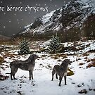 the night afore christmas by joak