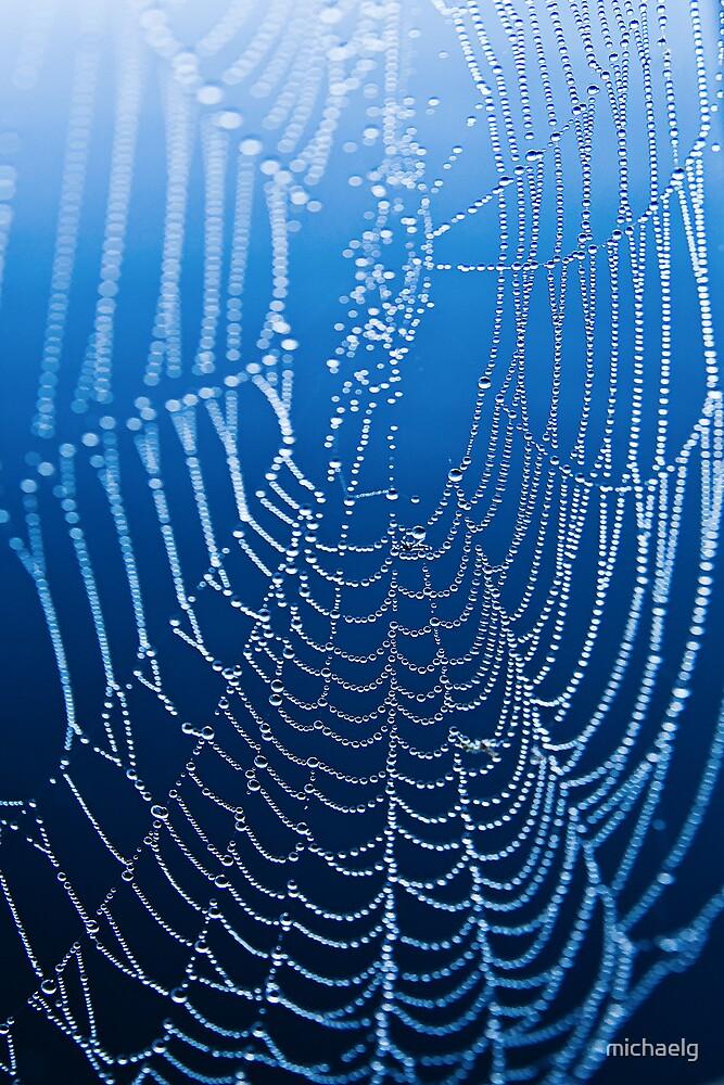 Web Mist #1 by michaelg