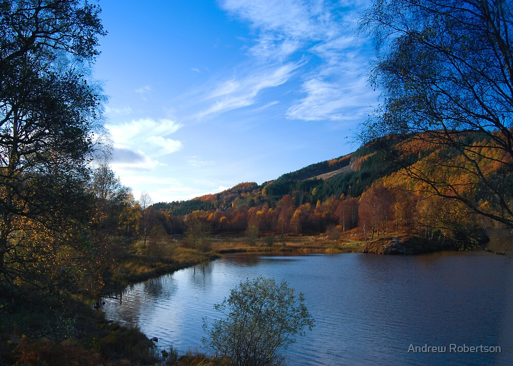 Colours of Autumn by Andrew Robertson