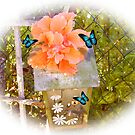 Vogelhaus, Hibiskus und Schmetterlinge von Irisangel