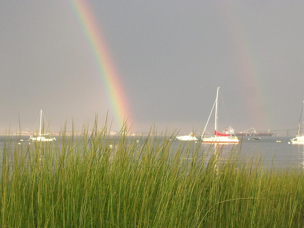 Over the rainbow by Nicole Chambers