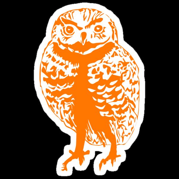 Borrowing Owl Illustration by Danielle Kerese